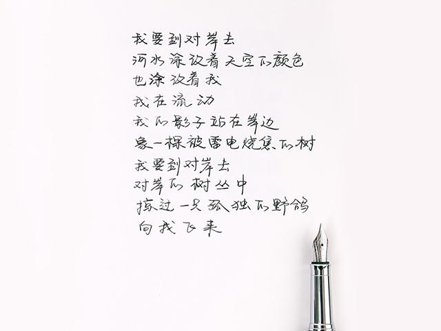 钢笔字迹特写-.jpg